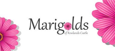 Marigolds Cleaners
